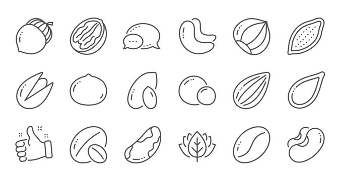 Nuts and seeds line icons. Hazelnut, Almond nut and Peanut. Walnut, Brazil nut, Pistachio icons. Cacao and Cashew nuts. Linear set. Quality line set. Vector