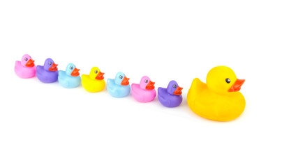 Big rubber duck leading a line of little rubber ducklings, on white - concept of leadership