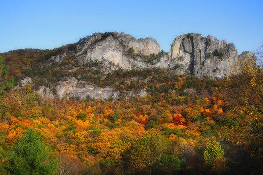 Seneca rocks peak with colorful autumn time.