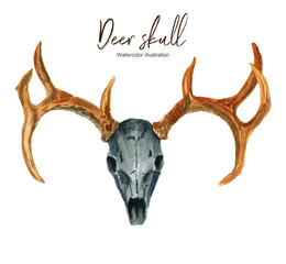 Isolated watercolor illustration with a deer skull on a white background. Suitable for creating cards, invitations, holidays, etc.
