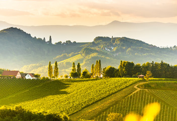 Self adhesive Wall Murals Yellow South styria vineyards landscape, near Gamlitz, Austria, Eckberg, Europe. Grape hills view from wine road in spring. Tourist destination, panorama