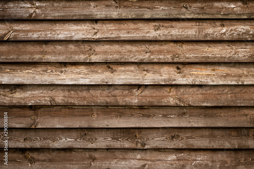 Abstract Background Empty Space Natural Pattern Art