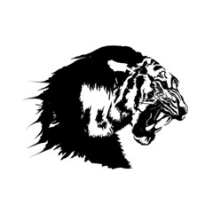 Illustration of the side face of the Bengal tiger in black and white.