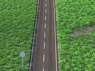 asphalt road through a green field