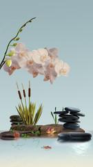 Wandbild mit Ochideen,  Gräser, Schmucksteine und Wasser