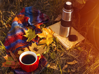 Autumn composition. Cup of coffee with autumn bright warm scarf and dry leaves outside. Autumn...
