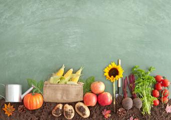 Autumn seasonal organic fruits and vegetables Wall mural