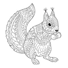 Cute squirrel coloring page for adult and children. Black and white vector illustration for coloring book design.