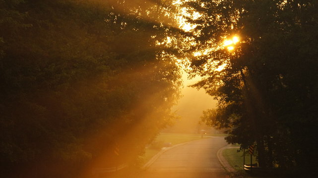 Sunset over road, Oakland County, Michigan