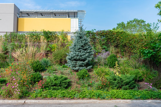 Beautiful Garden in front of Elevated Railroad Tracks on Ravenswood Avenue Chicago
