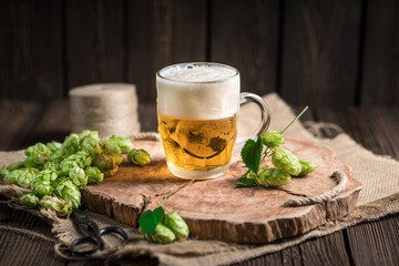 Fresh beer brewed with the traditional method of hops. A pint of beer on a wooden tray on a rustic wooden background with cut cones of freshly picked hops.
