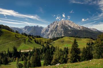 Idyllic landscape in the Alps Nationalpark Berchtesgadener Land, Bavaria, Germanyth cows grazing in fresh green meadows, Nationalpark Berchtesgadener Land, Bavaria, Germany Wall mural