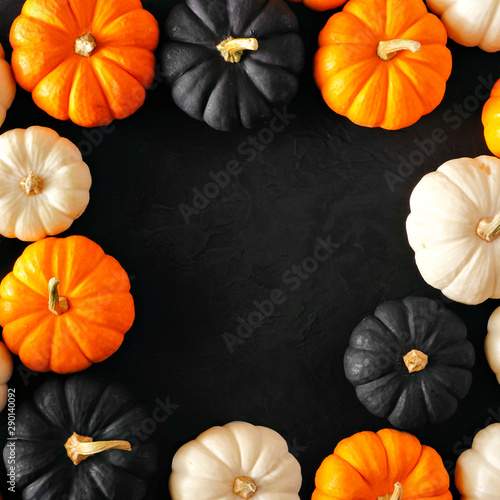 Autumn pumpkin square frame in Halloween colors orange, black and white against a black stone background. Copy space.