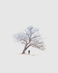 Rear view of man standing under tree