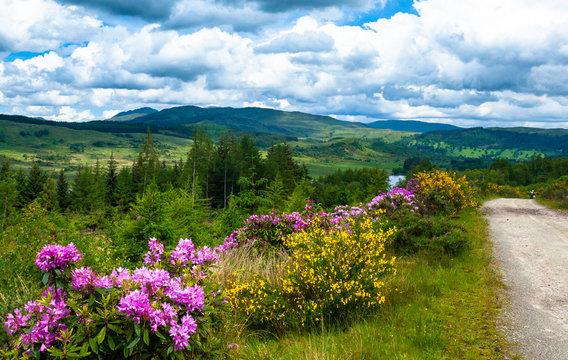 Lake and mountain landscape, Rob Roy Way, Scotland, United Kingdom