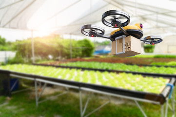 Hydroponics vegetables farming drone at indoors modern farm background. Service for delivery shipping healthy organic product and goods to customer. Business and farming innovative technology gadget Wall mural