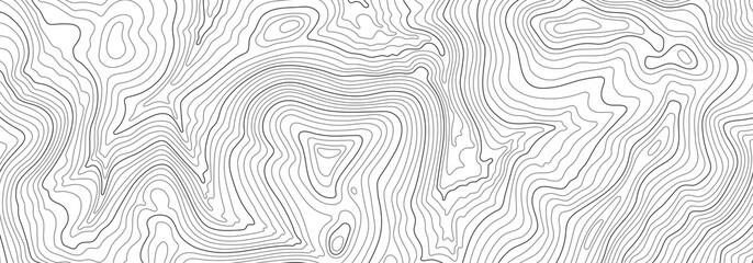 Light topographic line contour map background, stock vector illustration