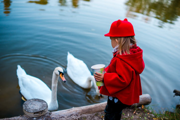 Little girl in the fall. Baby and swans in the park. Girl in a red coat near the pond.  Fashionable baby in a red coat for a walk. Beautiful girl outdoor. girl feeds the swans.