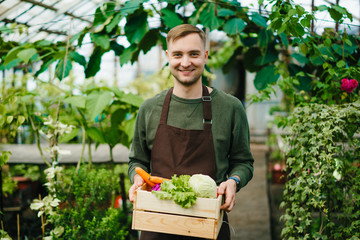 Fototapeta Attractive farmer man in apron standing in greenhouse holding wooden box of organic food looking at camera with happy face. People, work and nature concept. obraz