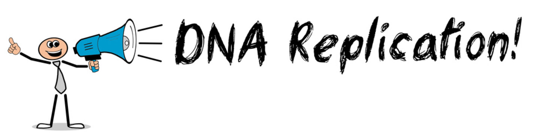 DNA Replication!