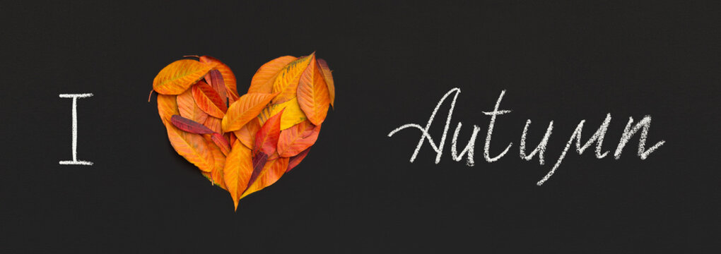 Creative composition of text and heart of leaves on black