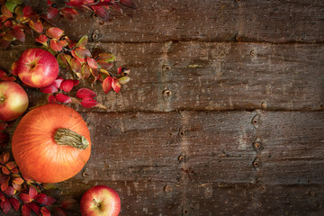 Autumn background with pumpkin, apples and branches with colorful leaves on natural tree bark background.