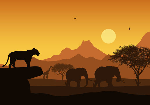 Realistic illustration of African safari with mountain landscape and trees, lion and elephant. Giraffe and flying bird. Under the orange sky with rising sun, vector