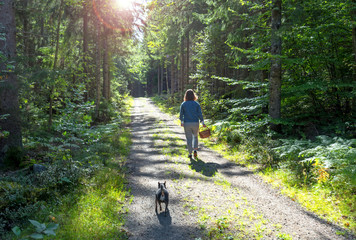 Girl with dog looking for swamp in forest
