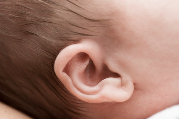 Close-up of newborn baby ear
