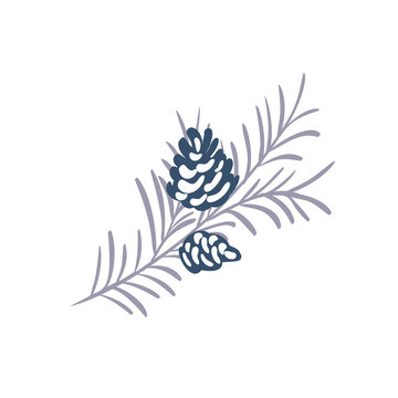 Hand drawn Christmas vector element of pine cone with branch and place for your text. Concept xmas winter holiday for design. Happy New Year