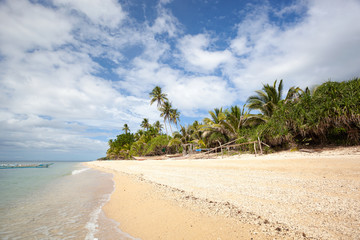 Fototapete - Tropical sandy beach with coconut palm trees. Summer vacations