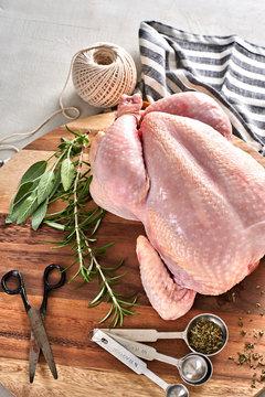 Ethically-raised, organic, free-range chicken