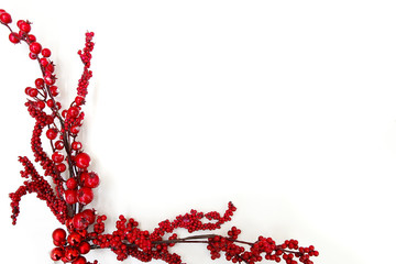 Christmas branch with red berries isolated on a white background