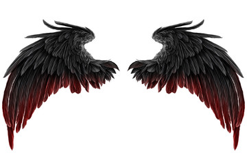 dark Angel Wings Wall mural