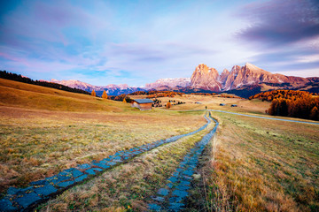 Scenic image of bright hills. Location Seiser Alm or Alpe di Siusi, South Tyrol, Italy.