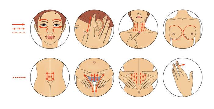 Acupuncture Massage of active points - face, ear, chest, abdomen, back. Illustration