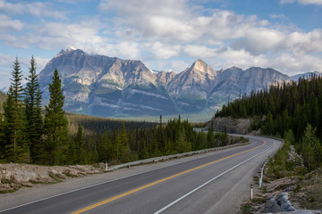 Wall Mural - Scenic road in the Canadian Rockies during a vibrant sunny and cloudy summer morning. Taken in Icefields Parkway, Banff National Park, Alberta, Canada.