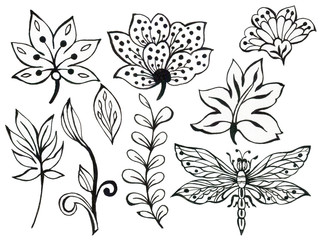 Abstract hand draw flower leaves butterfly insect and wave, doodle bouquet paisley oriental or arabic, russia art element