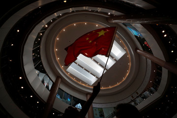 A pro-China supporterwaves a flag in a shopping mall at Harbour City in Hong Kong