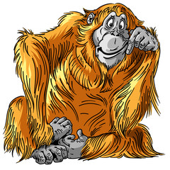 cartoon orangutan great ape. Sitting orange big monkey. Adult male. Isolated vector illustration