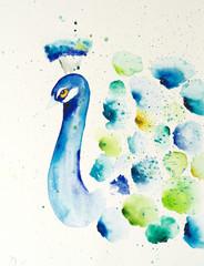 Watercolor painting of peacock. Handmade