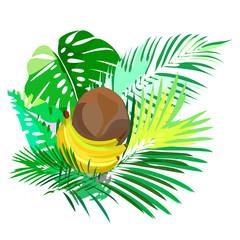 Tropical plants banana, vector illustration