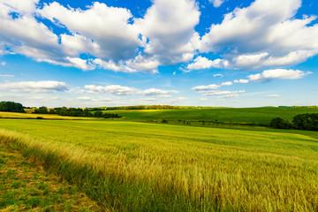 green field and blue sky german rural landscape  Fotoväggar