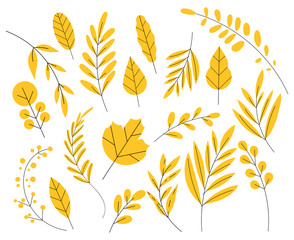Yellow leaf in a flat style. Set of autumn leaves, simple flat. Isolated on white background.