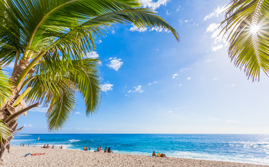 tropical beach with palm trees, Boucan Canot, Réunion Island