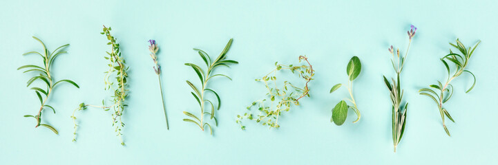 Türaufkleber Panoramafotos Culinary aromatic herbs on a teal blue background. Rosemary, thyme, lavender, sage, shot from above, a flat lay panorama