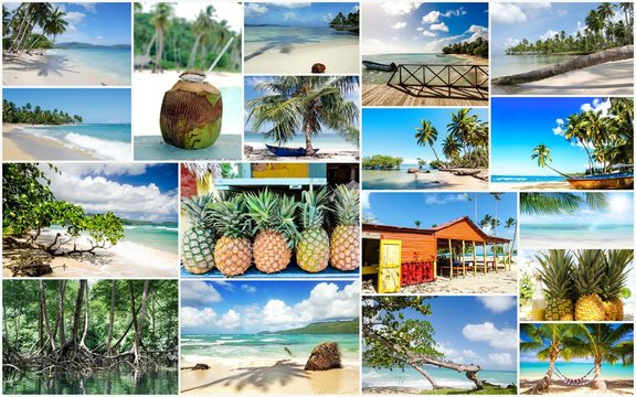 Collage from views of the Caribbean beaches, amazing landscape of Samana, Dominican Republic, with  shells, palm trees, a Caribbean house, flowers, ocean, waves, sky, sun and clouds