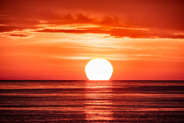 Tuinposter Koraal Beautiful red and orange sunset over the sea. The sun goes down over the sea.