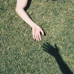 left hand in grassland
