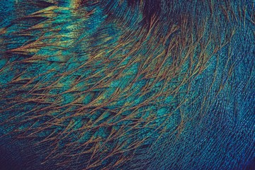 Blue, brown, and teal thread artwork